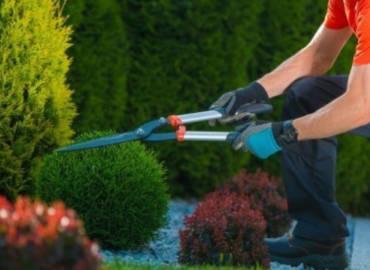 Aratura, Potatura, Molitura e Giardinaggio